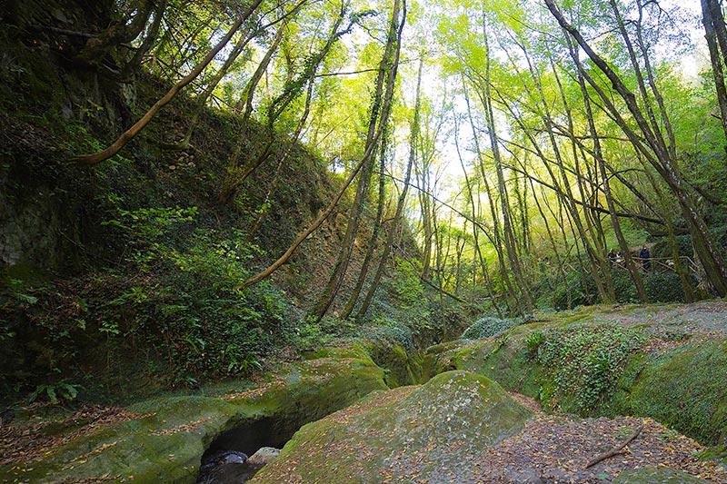 esperienze-trekking-podere-la-casina